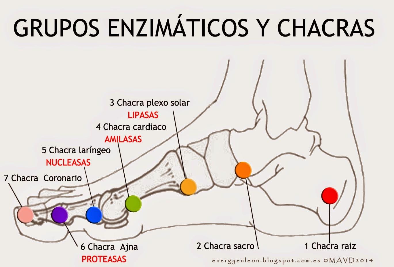 ASTURIAS-INFOCOSMETICA: CHACRAS DE .LOS PIES