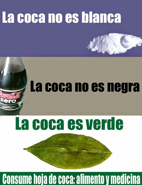 A ONU reconheceu como prática cultural a mastigação das folhas de coca pelos bolivianos.