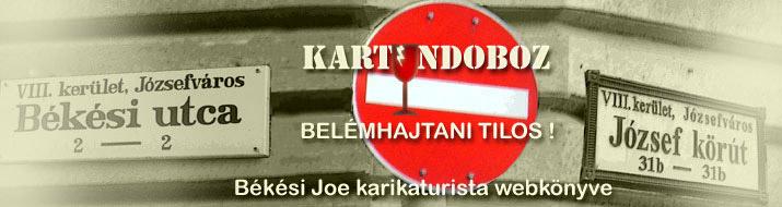 KARTUNDOBOZ / JOE NETNAPLÓJA