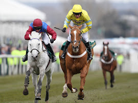 Our Biggest Aintree 2013 Festival Winner Triolo D'Alene @ 25/1