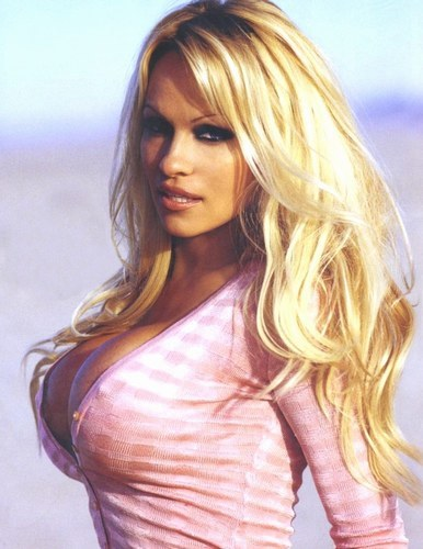 Pamela Anderson very very Sexy beach bikini Wallpapers HD
