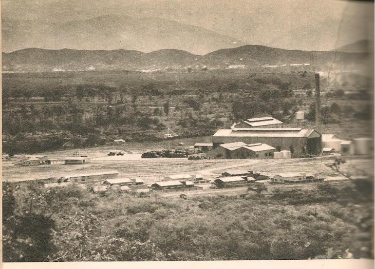 CENTRAL AZUCARERO DE UREÑA en 1955: