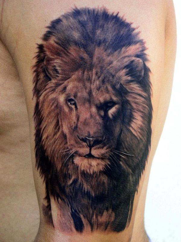 Tatuagens de le o lion tattoos tattoos my for Best lion tattoos