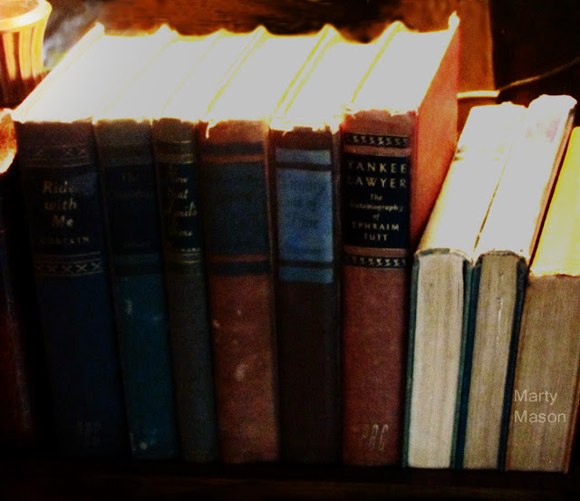 Grandmother's Books