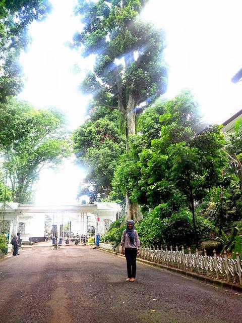 KRB_gate