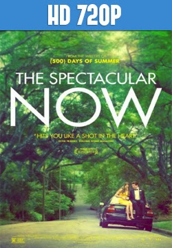 The Spectacular Now 720p Latino