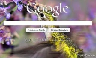Hasil pilihan gambar latar Google, Cara mudah mengganti  gambar latar Google, Picasa, Photo, Sesuai selera, merubah background Google