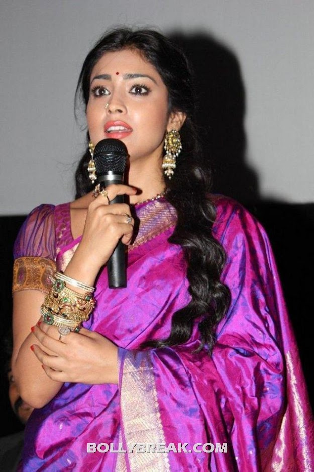 Shriya saran hot photo - (6) - Shriya saran purple saree photos