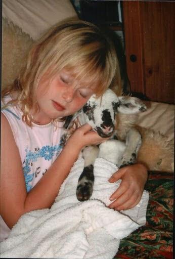 My lamb