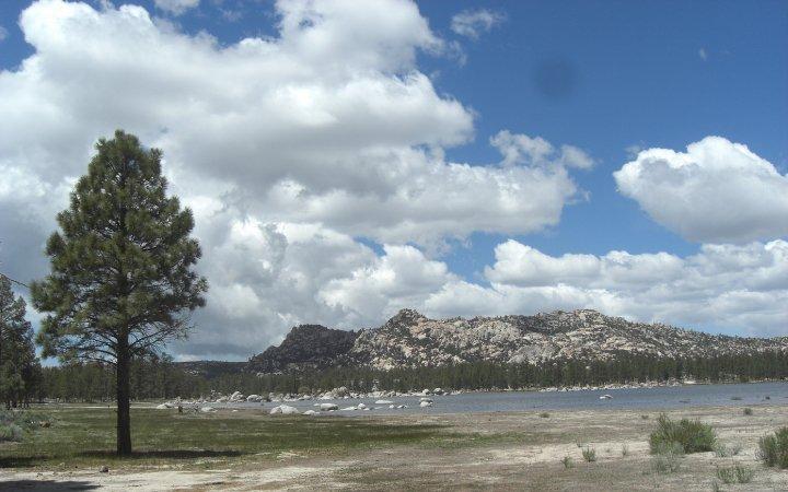 parque nacional:sierra de san pedro martir 29043_1183431445954_1833270712_354134_6514434_n