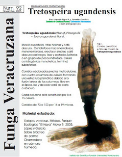 http://fungavera.com/fungavera/funga pdf/92_Tretospeira.pdf