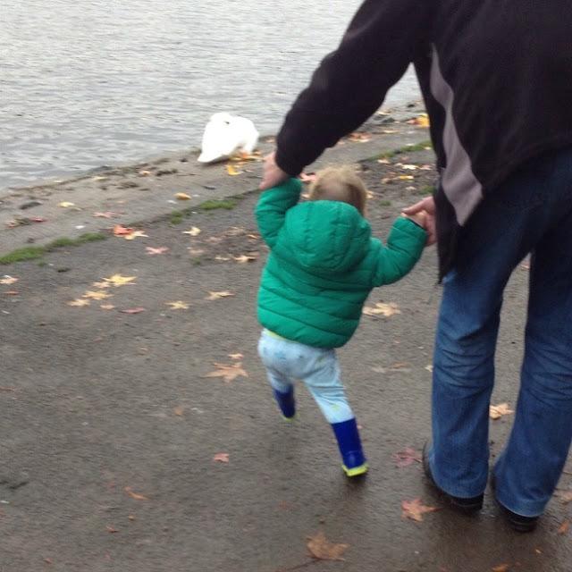 toddler cahsing ducks wearing his wonderful wellies