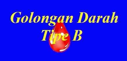 Golongan Darah Tipe B