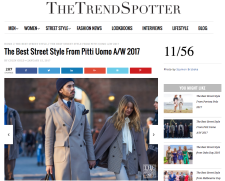 THE TREND SPOTTER