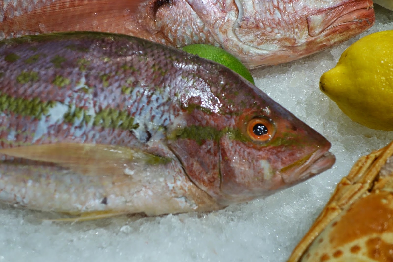 The passionate foodie sena15 the evolution of seafood for Sustainable fishing definition