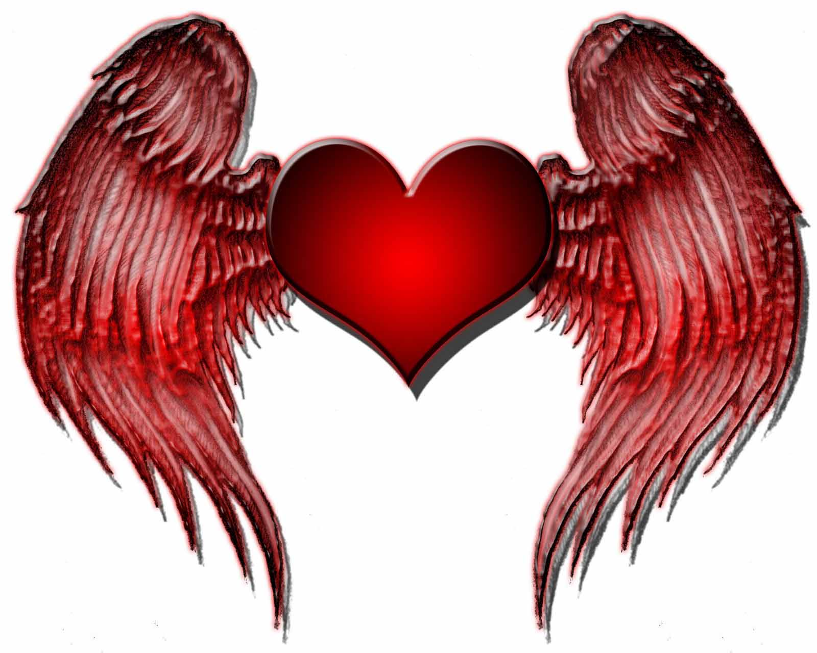 wings heart hd wallpapers ~ tracy morgan