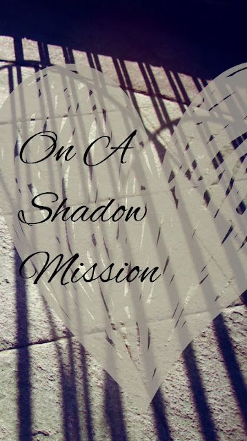 On a Shadow Mission a guest post by Marissa @ Reading List