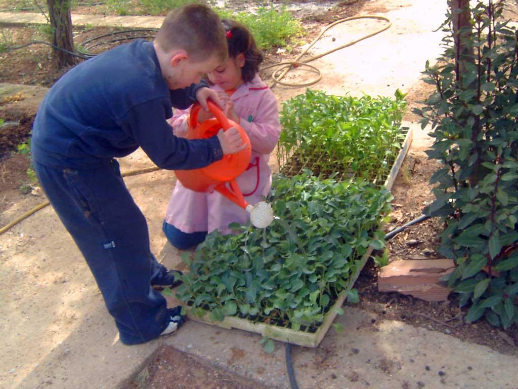 Horticultura en la escuela unidad ii establecimiento y for Que es un huerto escolar