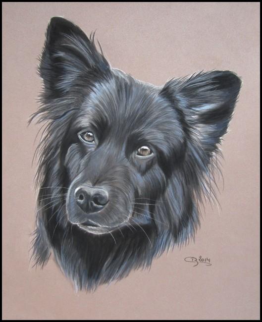 chien noir pastel