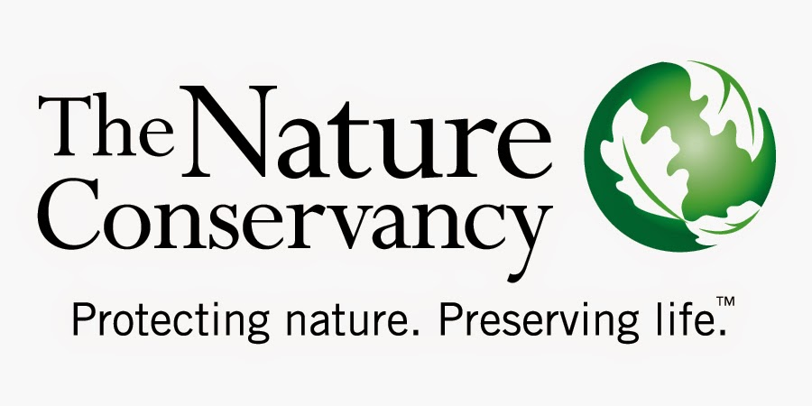 The Nature Conservancy Vacancy: Accountant - Jakarta, Indonesian