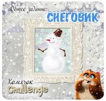 Общее задание № 13 - Снеговик