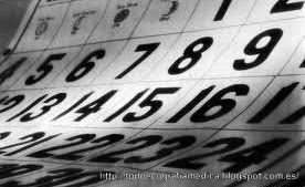 Calendario cursos de ecografia en España