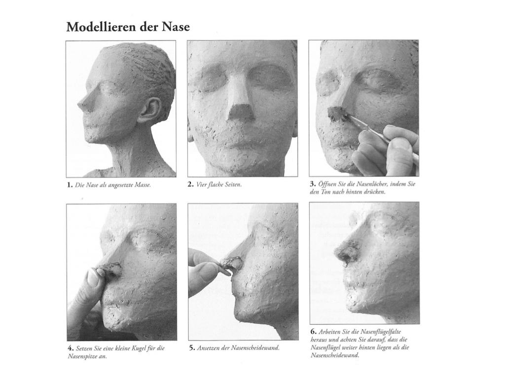Gemütlich Interne Nase Anatomie Galerie - Menschliche Anatomie ...