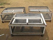 Quail Bird Cages-each takes up to 100 Birds