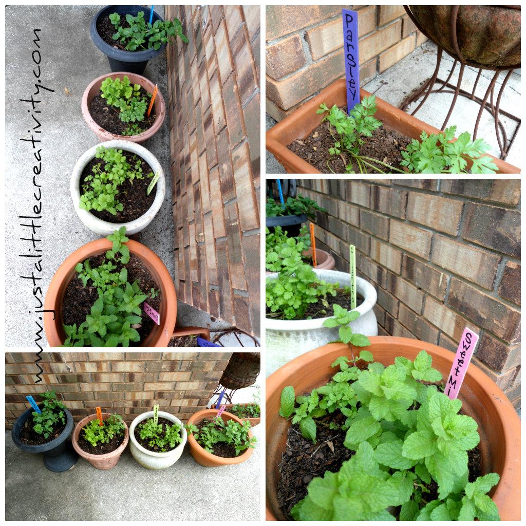 Diy Garden Markers From Paint Stir Sticks Kids Crafts