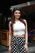 Hindi Actress Sherlyn Chopra photos-thumbnail-4