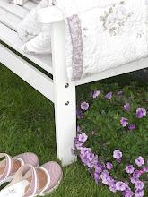 Sommer i hagen