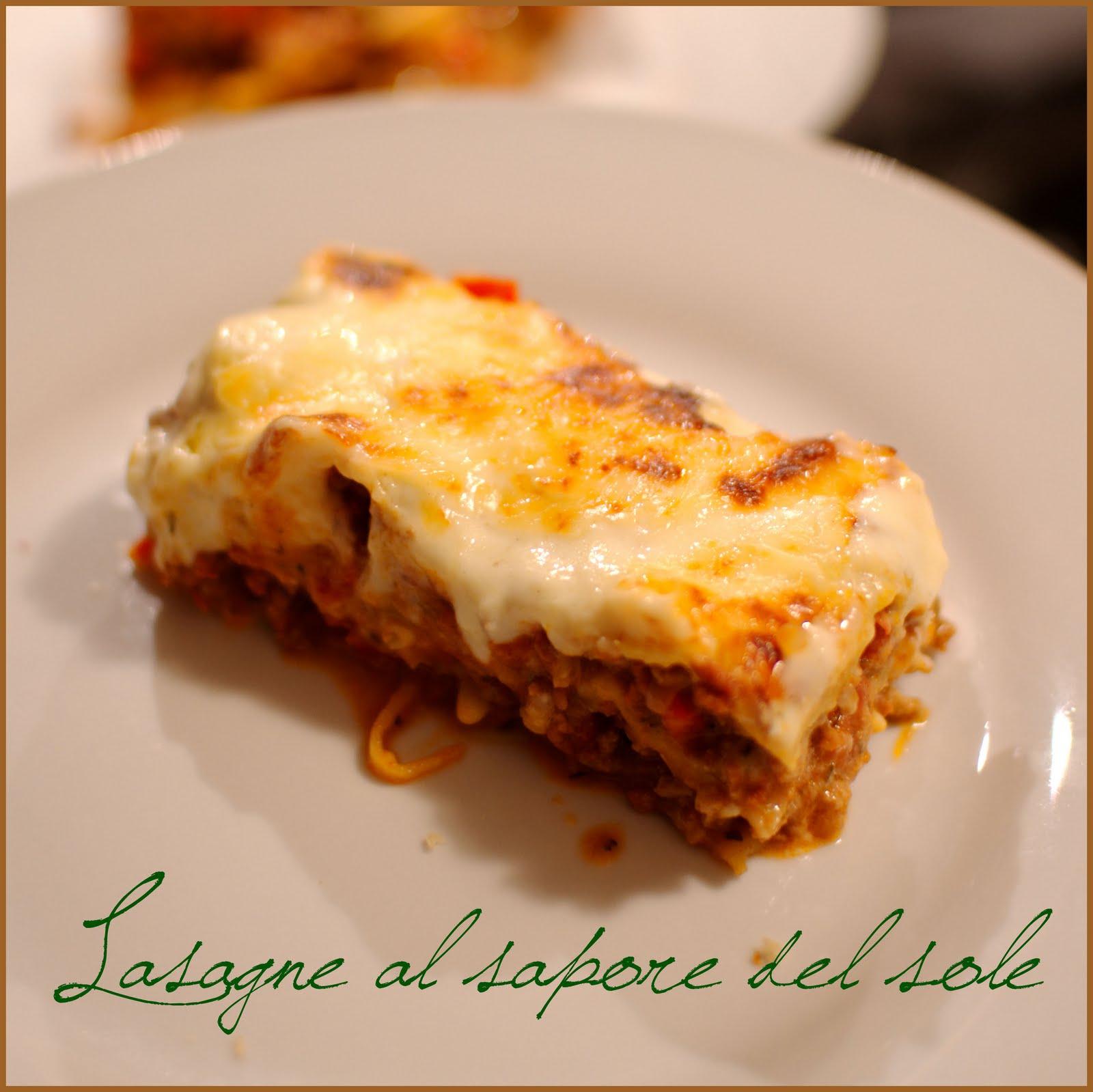 croquez craquez lasagnes aux saveurs du sud p 226 te 224 lasagne maison