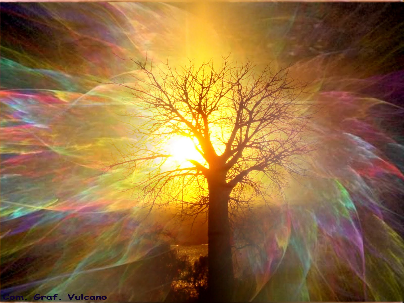 http://3.bp.blogspot.com/-3DKpeOoDV7U/Tm--e60NEaI/AAAAAAAAAGo/chmRQPBjTyA/s1600/luce-anima-ok.jpg