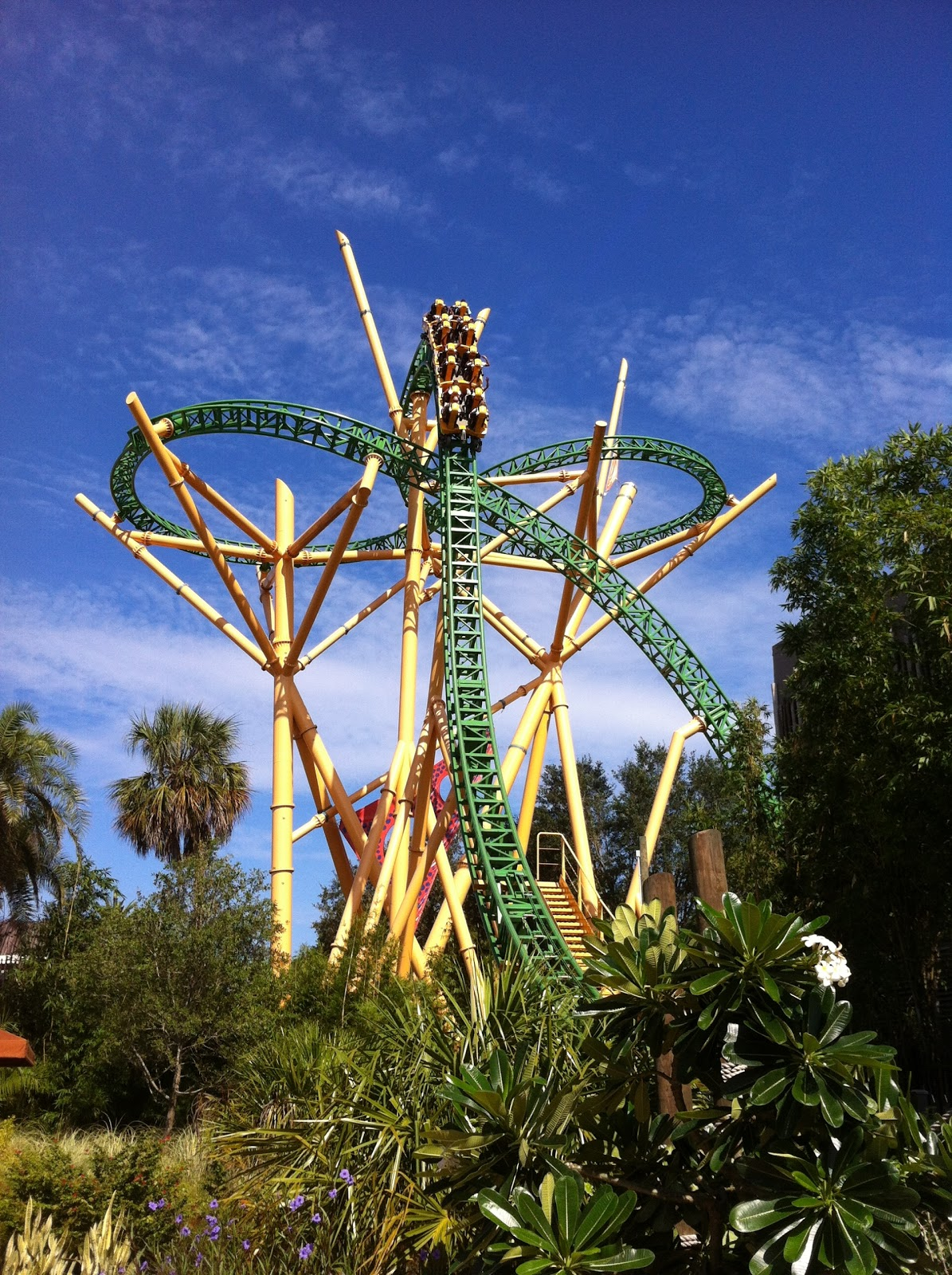 Busch Gardens Tampa My Day Of Roller Coasters Beef Brisket And Animal Sightings Adventures