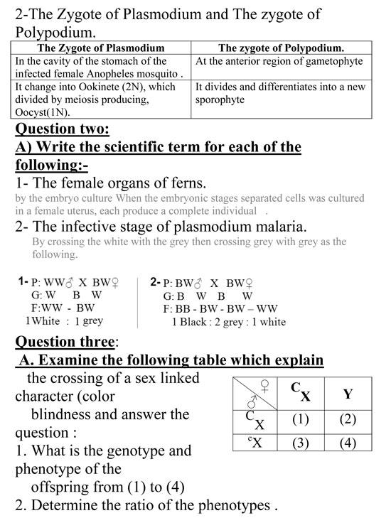 أقوى مراجعات ليلة الامتحان للثانوية العامة فى مادة الأحياء لغات Night exam sec3 in biology
