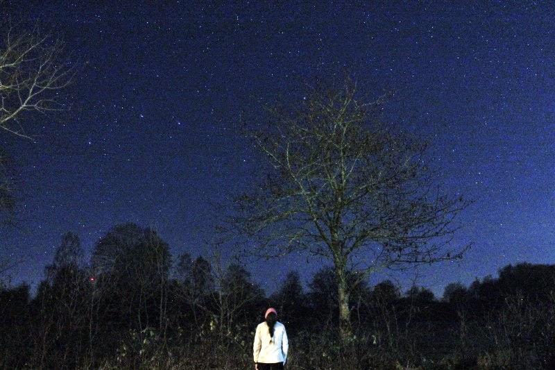 Sotto un cielo stellato