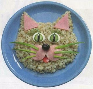 plato-gato