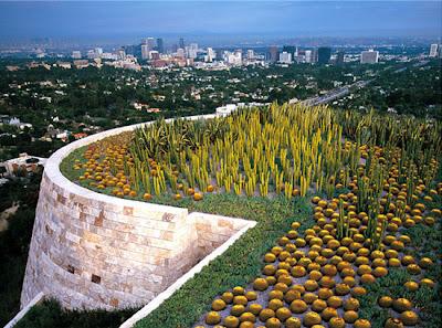 diseño creativo jardin cactus en azotea