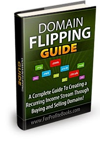 DOMAIN FLIPPING SECRETS
