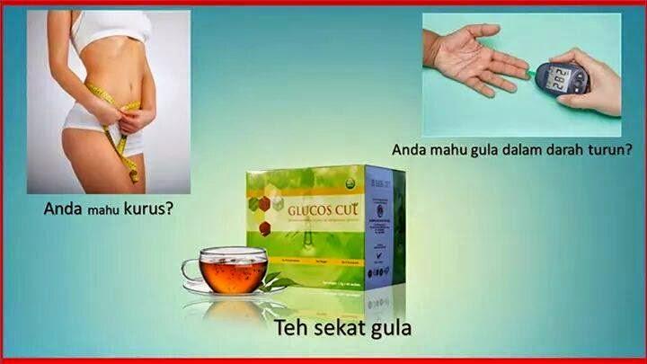 GC Tea Penawar Obesiti Dan Diabetes