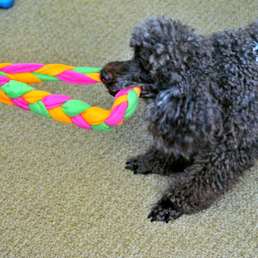 Make Dog Tug Toy: So, I Make Stuff: Fleece Tug Toy