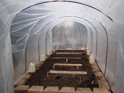 Como se hace un invernadero casero como se hace for Viveros baratos
