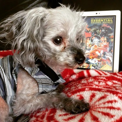 Murchie lays on a fuzzy red and white blanket. He wears his blue tank top. Behind him is a white Kobo with the cover of DC Entertainment Essential Graphic Novels on its screen.