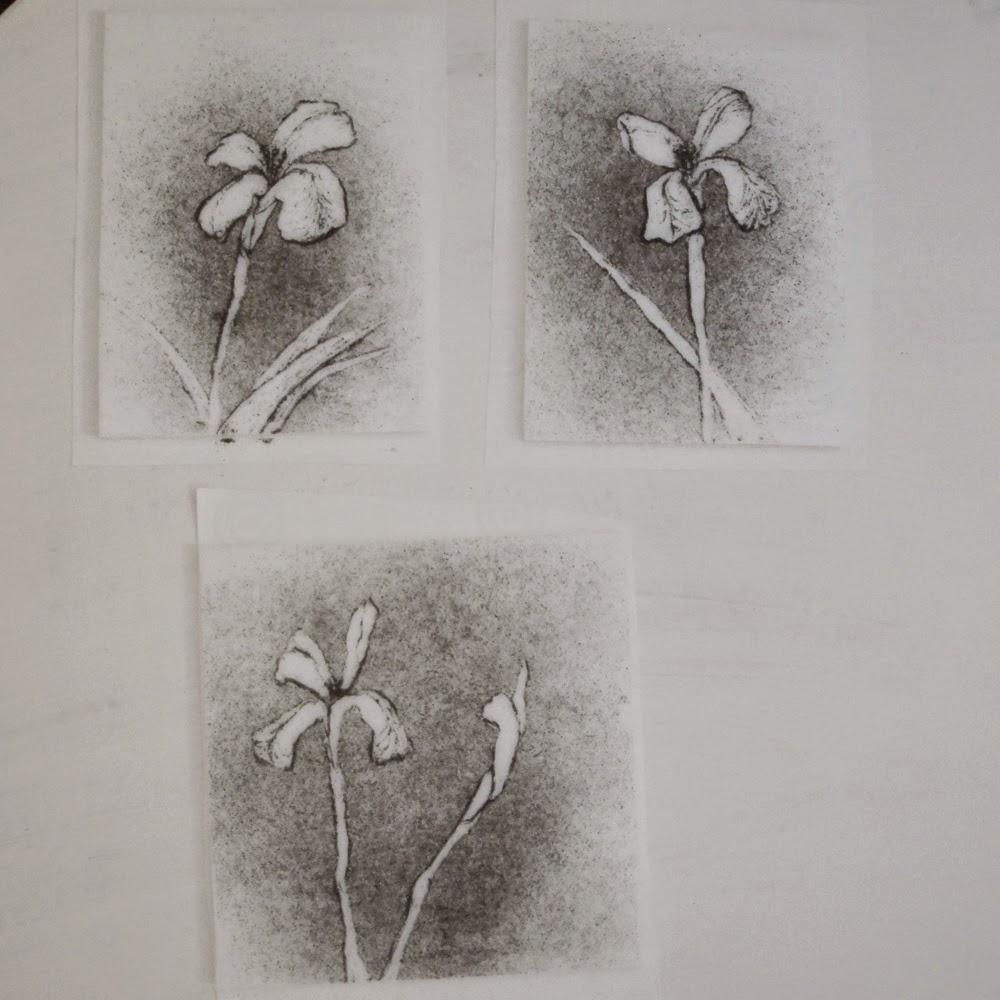 glass powder bullseye sgraffito fused frit painting flower iris white dietes art flutterbybutterfly flutterbyfoto day 17
