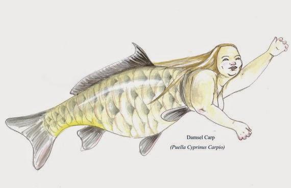 Mermaid by Jenny Mathews