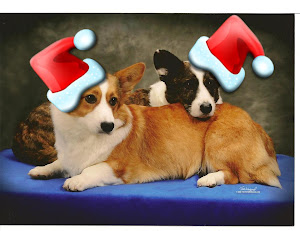 Click here for Cardi Claus Sign Up Form