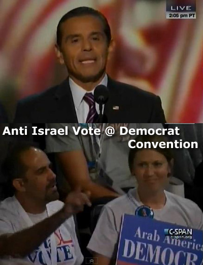 Democrat Vote against Israel