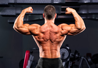 Somanabolic Muscle Maximizer Scam