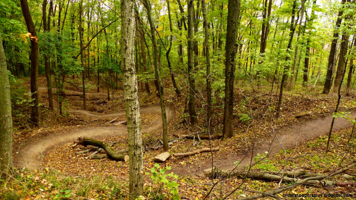 Indianapolis Area Mountain Biking Trails – Circle City Bicycles