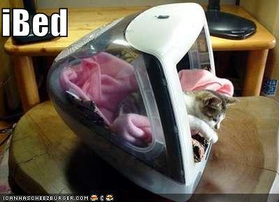 http://3.bp.blogspot.com/-3G62ZlGpG3s/UFtHeDjSRRI/AAAAAAAAAxk/LVubL9NaP6w/s1600/funny-pictures-cat-spleeps-in-imac.jpg